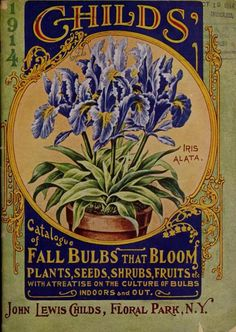 Front cover with an illustration of 'Iris Alata' from 'Childs' 1914 Catalogue of Fall Bulbs That Bloom. Plants, Seeds Shrubs, Fruits etc. With a Treatise on the Culture of Bulbs Indoors and Out.'  John Lewis Childs, Floral Park, N.Y.  U.S. Department...