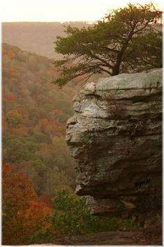 A breathtaking view in Alabama!  The 10 Most Beautiful Towns in Alabama on TheCultureTrip.com. Click the image to see why you should add Alabama to our Bucket-list. (Image via alapark.com)