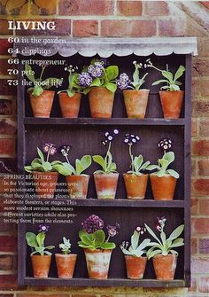 58 container gardening patio small spaces