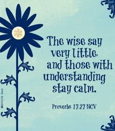 He who has knowledge spares his words, And a man of understanding is of a calm spirit. [Proverbs 17:27]