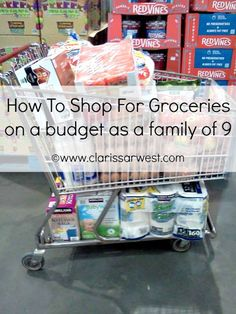 On a budget? See how this family of 9 shops for groceries on a budget!