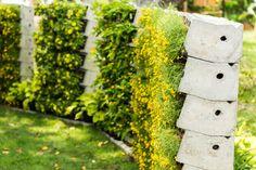 Mẫu cổng hàng rào bằng bê tông ly tâm lôi cuốn khi được kết hợp thành dãy kệ trồng cây tiện lợi.