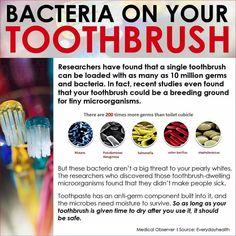 Toothbrush bacteria