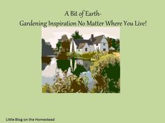 A Bit of Earth: Finding homesteading inspiration no matter where you are!