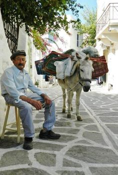 Daily excursions schedule & one day cruises from Paros. Airport & port transfers in Paros - Polos Tours Agency in Paros. Greek Man, Paros, Donkeys, Artistic Photography, Greek Islands, Husband Wife, Cruise, Tours, Jewels