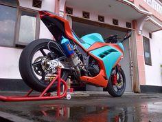 Ninja 250 / 300 tosca color