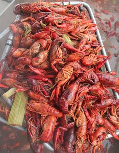 Full-service crawfish company in Austin, Texas. We specialize in live crawfish boil catering, seafood boiler sales, and local delivery of live purged crawfish. Crawfish Recipes, Seafood Boil Recipes, Cajun Recipes, Seafood Dishes, Cooking Recipes, Best Boiled Crawfish Recipe, Crawfish Party, Seafood Boil Party, Crawfish Season