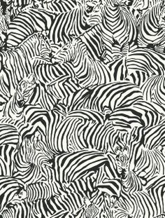 wallpaper bw black and white  pattern zebra