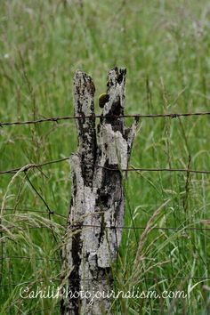 Rustic Fence | The Ambiguity Of Fences