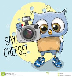 owl wuith camera - Google Search