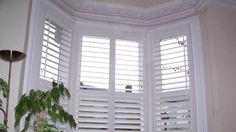White wooden Venetian blinds for our bay windows?