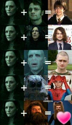 The 5 versions of Harry Potter.site The 5 versions of Harry Potter. – The 5 versions of Harry Potter.