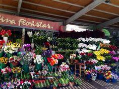 Fuera del mercado, se pueden encontrar flores. La tienda vende flores típicas y flores tropicales. Los colores de la tienda son increíbles.