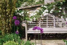 Bench and paving with clematis Amazing Gardens, Beautiful Gardens, Lutyens Bench, Square Bath, Terrace Garden, Walled Garden, Woodland Garden, Garden Borders, Garden Inspiration