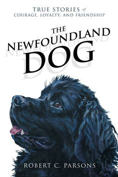 The Newfoundland Dog: True Stories of Courage, Loyalty, and Friendship ebook by Robert C Parsons - Rakuten Kobo Dog Books, Adoptable Beagle, Newfoundland And Labrador, Labrador Retriever Dog, Bull Terrier Dog, Mountain Dogs, Bernese Mountain, Gentle Giant, True Stories