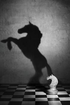Rule of Thirds Photography black and white wonderful style by Victoria Ivanova still life Soul of the mustang Shadow Photography, Conceptual Photography, Conceptual Art, Still Life Photography, Creative Photography, Art Photography, Street Photography, Illusion Photography, Contrast Photography