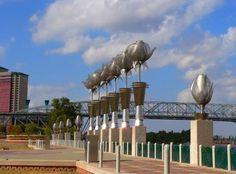 Park on the Red River ~ Shreveport, Louisiana