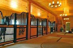 Check out the curves on that beauty!  I'm referring to the beautiful horse stalls by Classic Equine Equipment