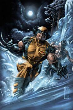 More Wolverine artwork