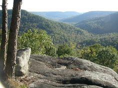 Fiery Gizzard Trail, South Cumberland Mountains, TN