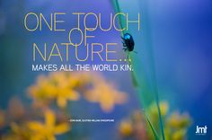 Quote from John Muir with image from the John Muir Trail (JMT)