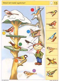 Vogels in de winter (Logico primo) te gebruiken als knijpkaart - New Ideas Brain Activities, Montessori Activities, Preschool Worksheets, Preschool Learning, Activities For Kids, Feeding Birds In Winter, Animals That Hibernate, Picture Comprehension, Early Education