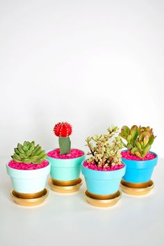 Homey Oh My! for PBteen | DIY Gold Dipped Plant Pots