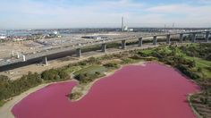 This eye-searing pink lake is not full of Pepto-Bismol     - CNET  Enlarge Image  Dont go for a dip in this lake.                                                       Parks Victoria                                                   Unlike the pink water flowing from taps in Canada this week the hot-pink water in an Australian lake comes from natural causes. A salt lake in Westgate Park in Victoria turned a cheery shade of bright pink due to a combination of seasonal weather conditions and…