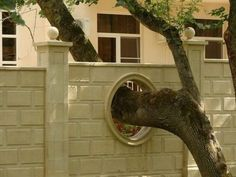 Build around nature :] just saw a fence with a hole in it for a tree in Dover, of all places, the other day! too cool!