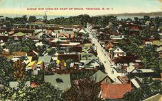 Birds' Eye View of Port of Spain, 1913 Trinidad Soca Music, Port Of Spain, Nature Center, Lost City, Small Island, Birds Eye View, West Indies, Bird Species, The Good Old Days
