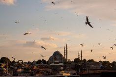 50 fotos para morir de amor por Estambul
