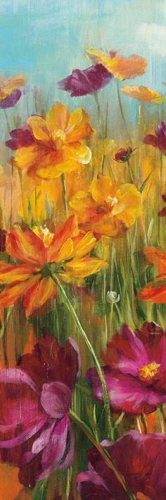 Cosmos in the Field II by Danhui Nai - Art Print Framed & Unframed at www.framedartbytilliams.com