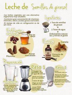 Leche de semillas de girasol - Barcelona Alternativa