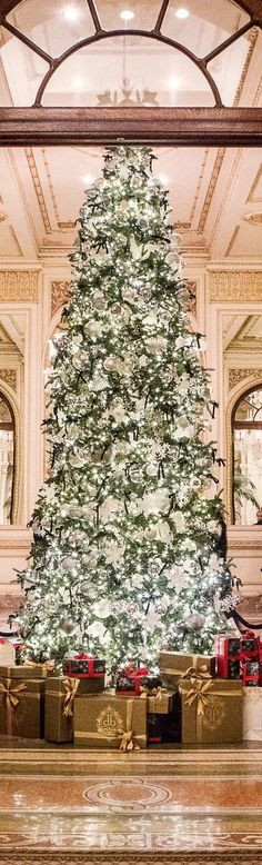 Christmas Tree at the Plaza Hotel NYC