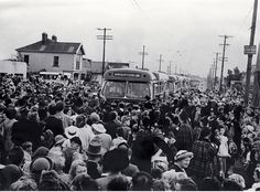 The first buses of the New Brighton run  18 oct 1952
