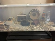 Proud of your hamsters cage - Page 814 - Supplies & Accessories Hamsters, Rodents, Hamster Bin Cage, Proud Of You, Dog Bowls, Pets, Crafts, Animals, Terrariums