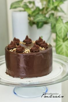 Kakkuateljee Pionilaakso ihana suklaakakku!!