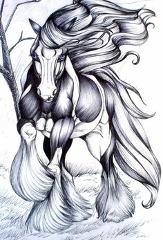 Irish tinker, Gypsy vanner, Gypsy horse, which ever name they are known by, they are a magnificent breed! Awesome art, possible tattoo idea!