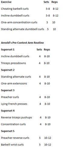 Arnonlds arm work out Workout List, Fit Board Workouts, Butt Workout, Workout Plan For Beginners, Workout Plan For Women, Chest And Arm Workout, Concentration Curls, Arm Curls, Mass Building