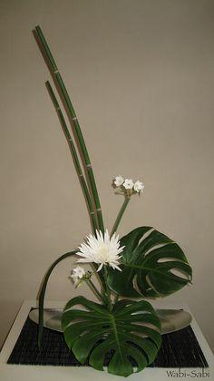 moribana equisetum y monstera   Wabi-Sabi Ikebana   Flickr