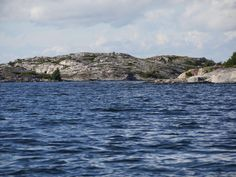 Björkö Archipelago, Dolphins, Finland, Denmark, Norway, Sailing, Waves, Europe, Boat