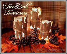 hurricanes, lanterns, candles, tree bark, rustic, pine cone, fall, diy, craft, upcycle
