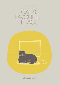 """Cat's Favourite Place"" is a graphic series created by Rosly Mok. And what is the favorite place of your cat?"
