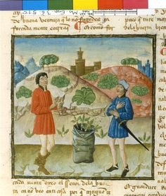 Amigo et le jardinier Anonyme 14e siècle période médiévale - Bas Moyen Âge LOCALISATIONParis, Bibliothèque nationale de France (BnF)