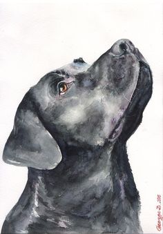 Black Labrador Print of the Original Watercolor Painting art cute Christmas Lab