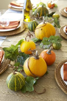 37 Easy Thanksgiving Centerpieces That Bring Elegance To Your Holiday Feast 37 Easy Thanksgiving Centerpieces That Bring Elegance To Your Holiday Feast The Best Meal Of The Year Calls For A Well Decorated Table Pumpkin Vine Fall Centerpiece Diy Thanksgiving Centerpieces, Thanksgiving Diy, Holiday Tables, Thanksgiving Tablescapes, Simple Table Decorations, Decoration Table, Centerpiece Ideas, Floral Decorations, House Decorations