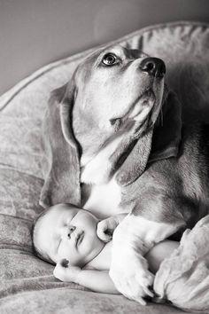 Perro cuidando bebe 1