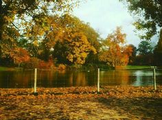 Fall wonderland by the lake #fall #autumn #automne #paris