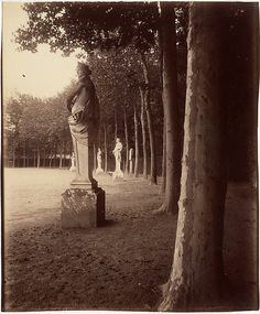 Eugène Atget (French, 1857–1927). Versailles - Cour du Parc, 1902. The Metropolitan Museum of Art, New York. Gilman Collection, Purchase, Mr. and Mrs. Henry R. Kravis Gift, 2005 (2005.100.533) #paris