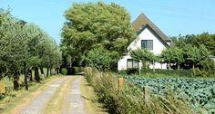 Afbeelding van http://www.klavermakelaardij.nl/object/media/749/2699601527/s412x220/blockhuysenlaan-2-zijdewind-foto-3.jpg.